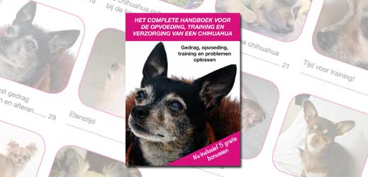 chihuahua_handboek_review_header