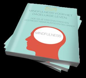 Mindfulness voor het dagelijkse leven