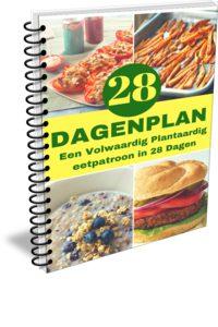 28-Dagenplan