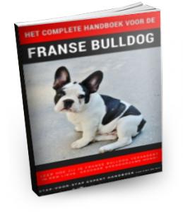 Franse Bulldog geheimen